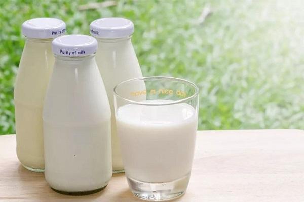 Sữa tươi không đường cung cấp nhiều Vitamin cho cơ thể
