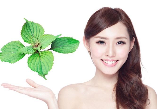 Bài thuốc tắm trắng da hiệu quả bằng các loại lá trong vườn